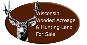 Wooded Acrage For Sale In Wisconsin